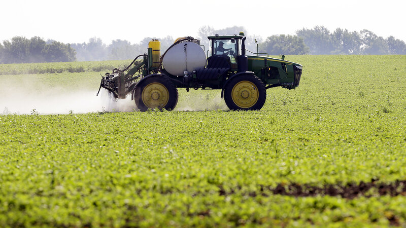 How GMOs Cut The Use Of Pesticides — And Perhaps Boosted It