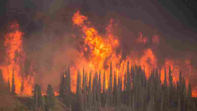 Fast-Growing Idaho Wildfire Could Keep Burning Until October