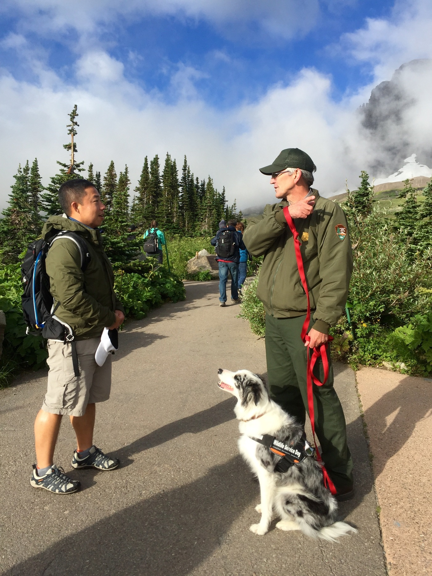 Teaching Dogs To Bark On Trail