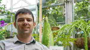 FOJBI Friday: Meet Ian Street, The Plant Whisperer