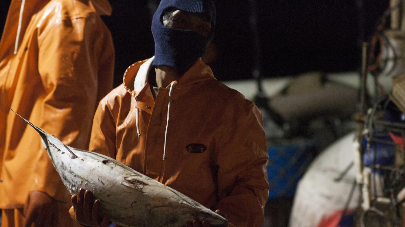 fishing industry : NPR