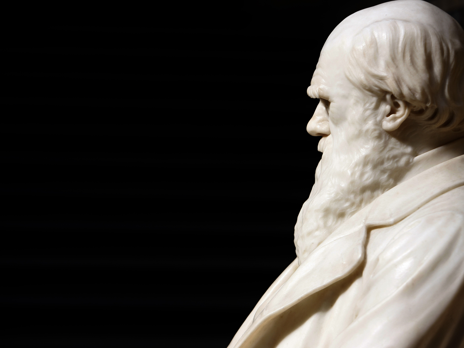 Evolution Uproar: What To Do When A Famous Author Dismisses Darwin