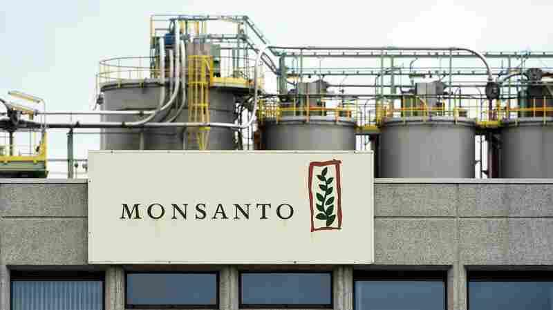 Chemical Giant Bayer Agrees To Buy Monsanto For $66 Billion