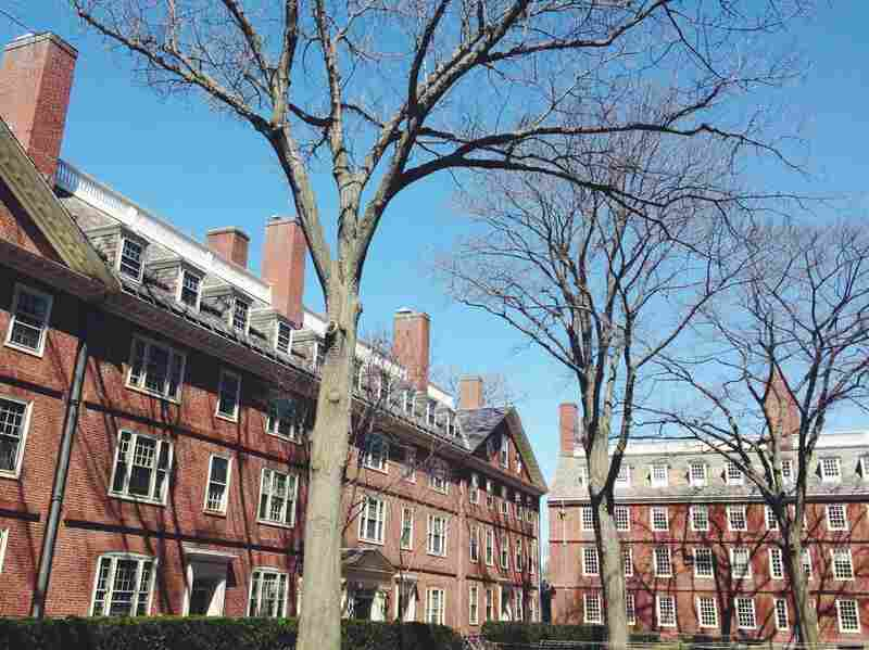 Harvard's largest-in-nation endowment shrinks by nearly $2B