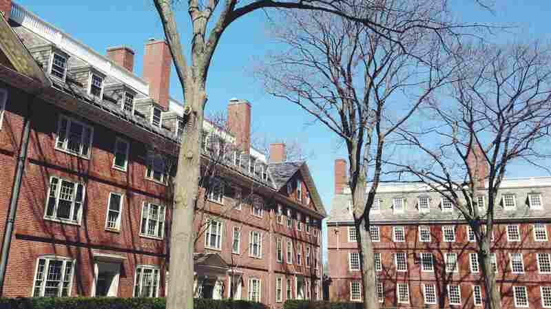 Harvard University Endowment Posts 2 Percent Loss On Investments