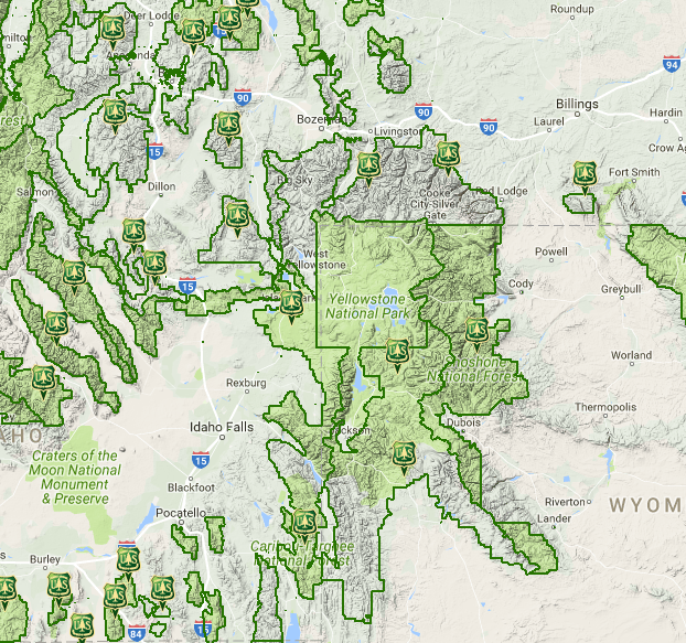 Where Did National Forests Go Green Spaces Disappear From Google - Us national forests on a map