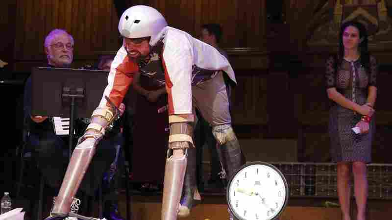Ig Nobel Awards Given For Rat Pants, Fly Catchers And Rocks With Personalities