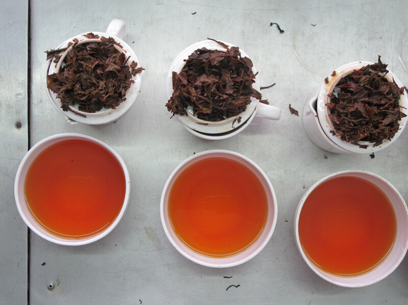 Autumn Flush: The Best Darjeeling Tea You'll (Likely Never