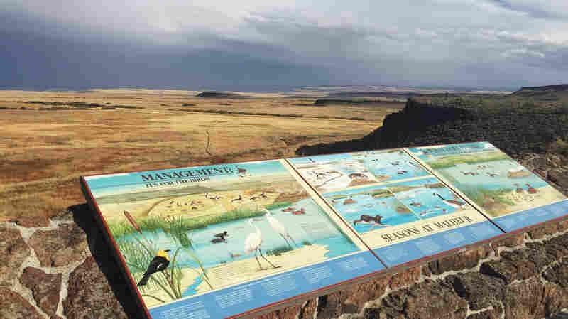 Anti-Government Standoff Puts Oregon's Malheur Back On Tourist Map