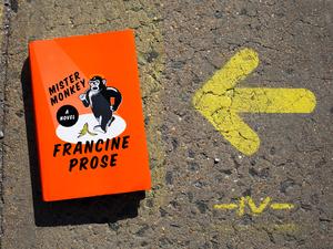 Mister Monkey by Francine Prose (Raquel Zaldivar/NPR)
