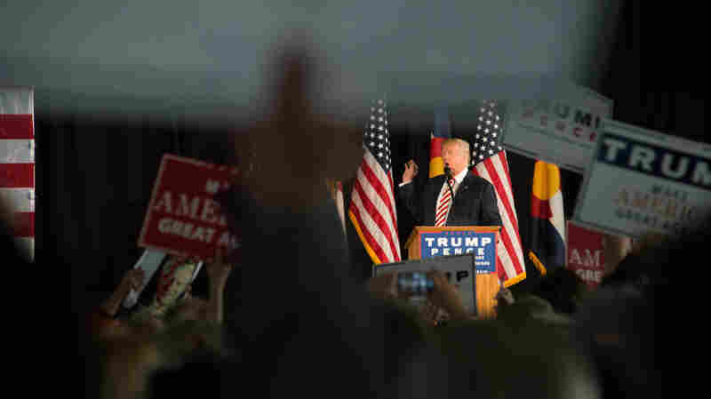 Trump Proposes Term Limits For Congress
