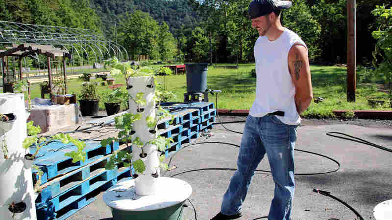 In Coal Country, Farmers Get Creative To Bridge The Fresh Produce Gap
