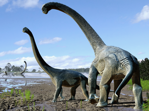 The newly discovered dinosaur species Savannasaurus elliottorum was about half the length of a basketball court and lived some 95 million years ago.