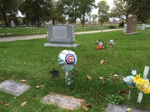 At cemeteries across Chicago, Cubs fans are leaving flags, pennants, flowers and balloons alongside the headstones of departed fans.