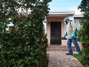 Joseph Blackman, a Miami-Dade County mosquito control inspector, at work in Miami. Mosquitoes infected with Zika are now spreading the illness in a least four different parts of the city, according to federal health officials.