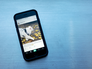 Twitter announced Thursday that it would be discontinuing Vine, a six second looped social video app.