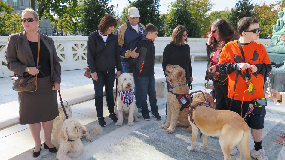 Families from 4 Paws for Ability, a nonprofit that places service dogs with children with disabilities, brought their service dogs to the Supreme Court on Monday in support of the Fry family.