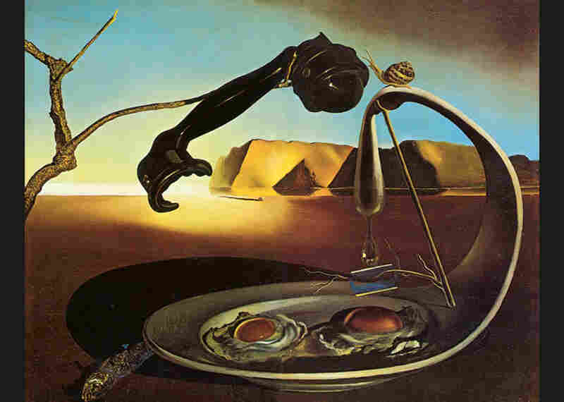 the secret life of salvador dali book