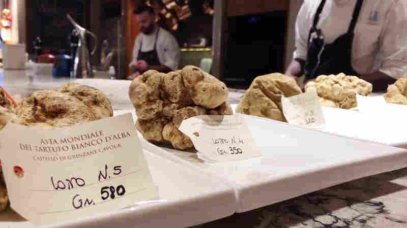 A $112,000 White Truffle?! At Auction, Philly Embraces Fungi Mania