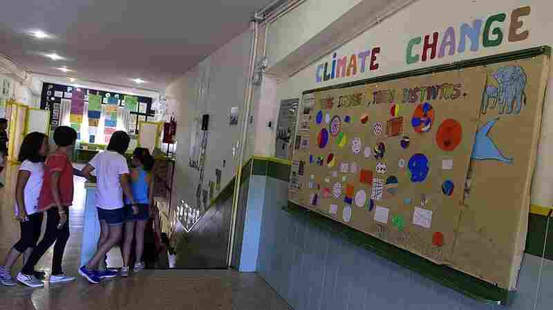 What Does A Trump Presidency Mean For Climate-Change Education?