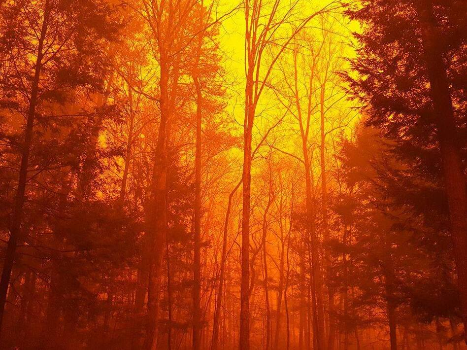 The wildfire continues to burn in the Great Smoky Mountains National Park in eastern Tennessee on Tuesday. (Great Smoky Mountains National Park)