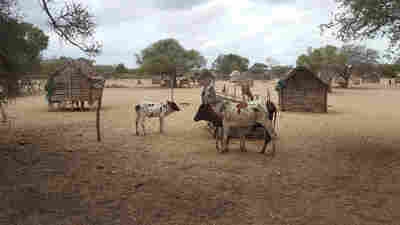 Drought-Stricken Southern Madagascar Teeters On The Edge Of Famine
