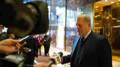 Al Gore Meets With Donald And Ivanka Trump In Search For 'Common Ground'