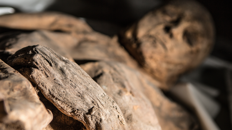 A Mummy's DNA May Help Solve The Mystery Of The Origins Of Smallpox