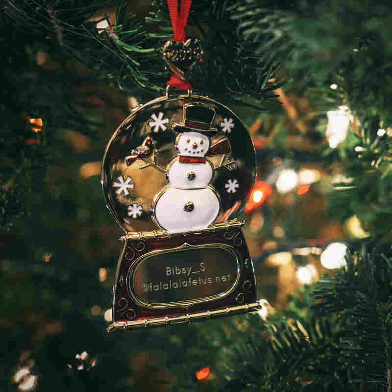 Kaitlin Stevenson's ornament