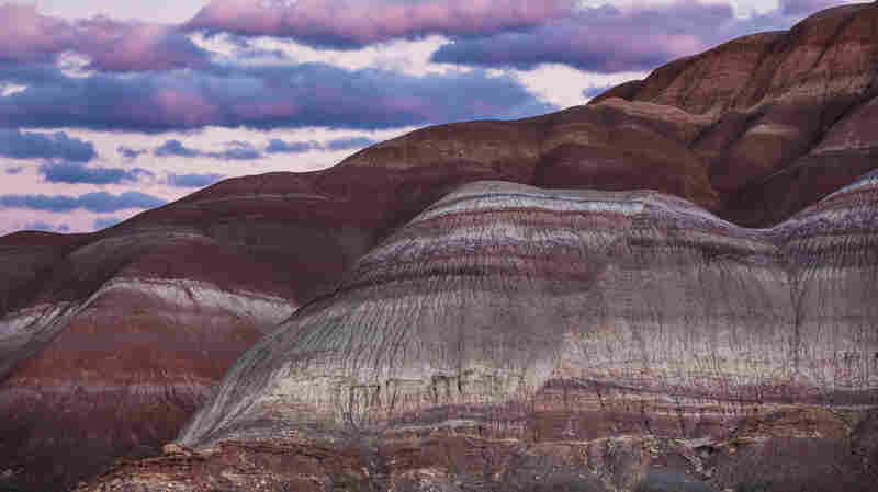 A Planet With Brains? The Peril And Potential Of Self-Aware Geological Change