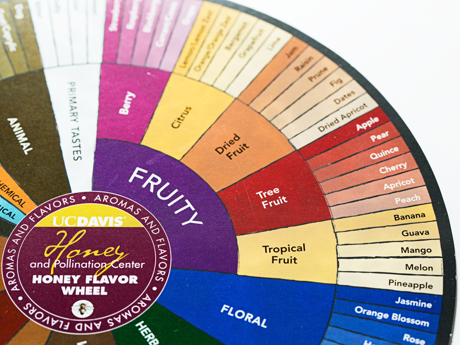 One Man S Quest To Reinvent The Wheel The Flavor Wheel