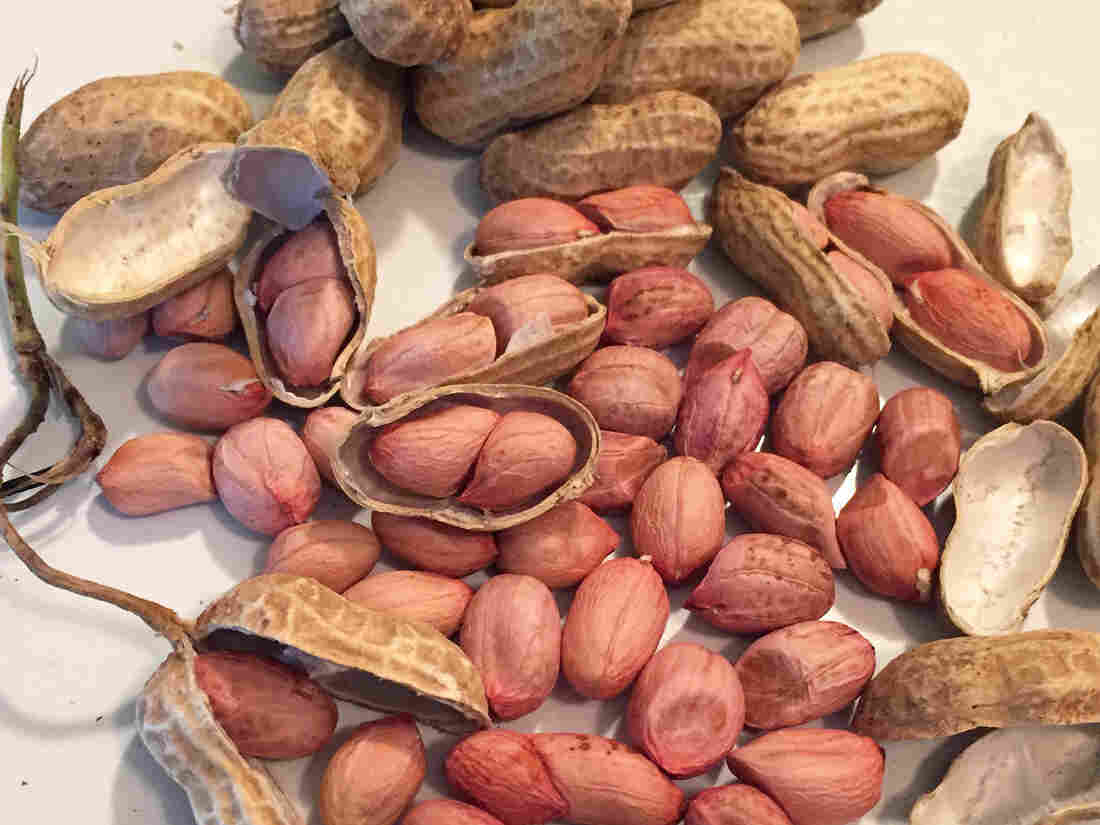 foto 29 Amazing Benefits Of Peanuts (Mungfali) For Skin, Hair And Health