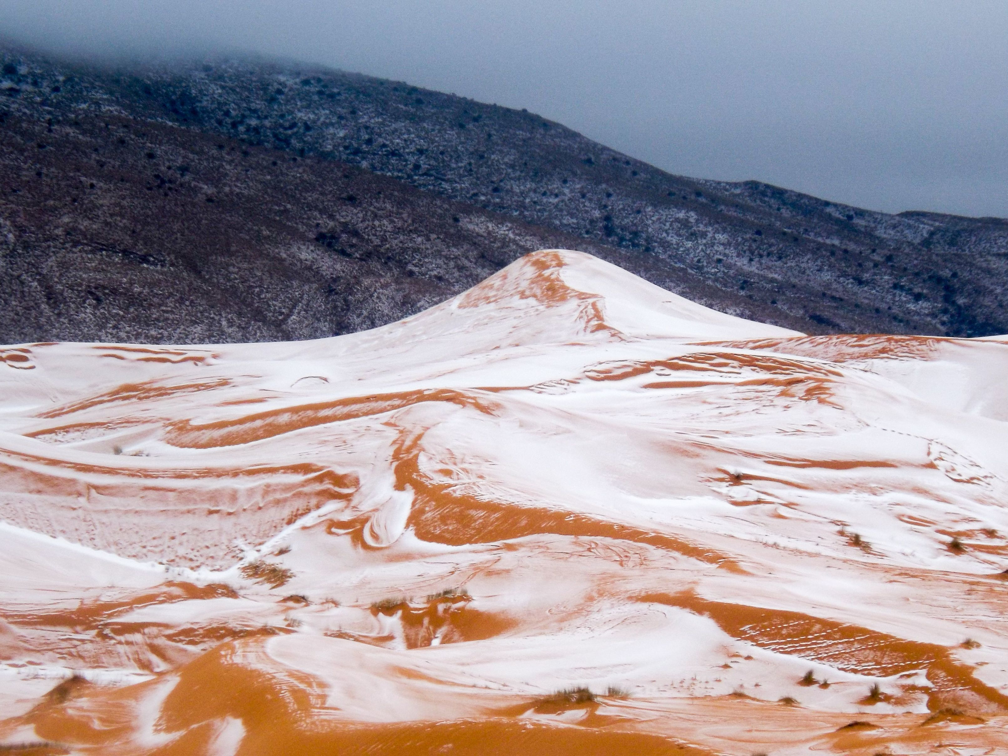 The day snow fell on Sahara desert