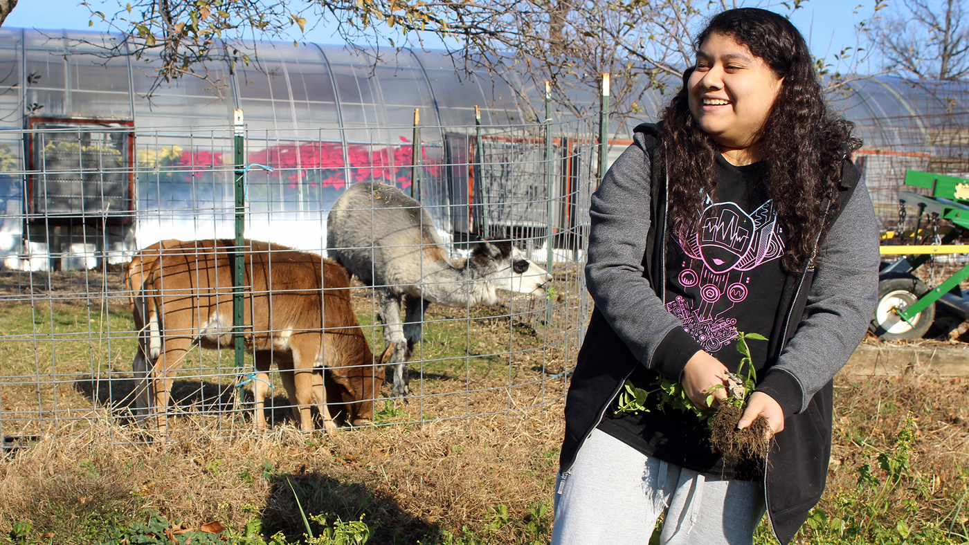 The Next Generation Of Farmers Is Being Trained In New York City High Schools