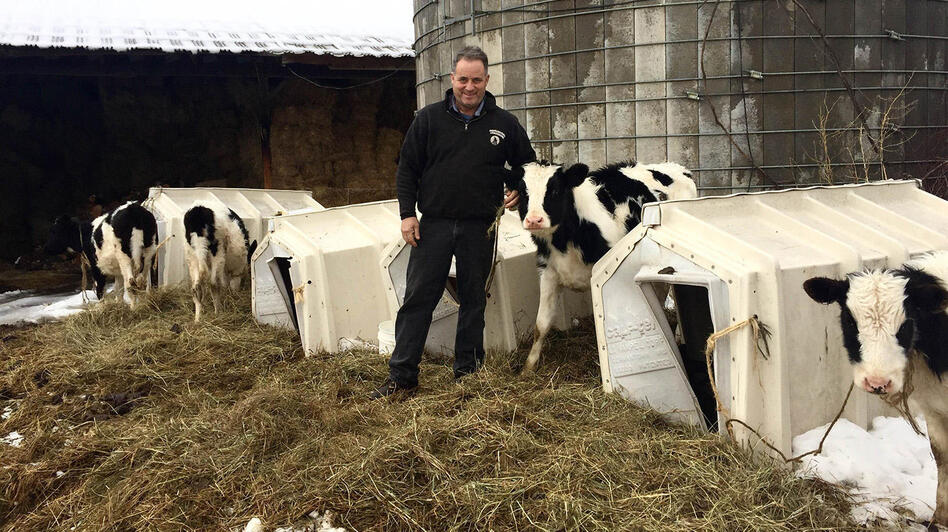 David Fuller has been a dairy farmer since 1977. He gets about the same amount of money for milk these days he did when he started. (Rebecca Sananes/Vermont Public Radio)