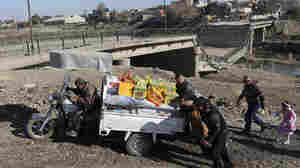 Iraqi Troops Edge Deeper Into Mosul — With Caution