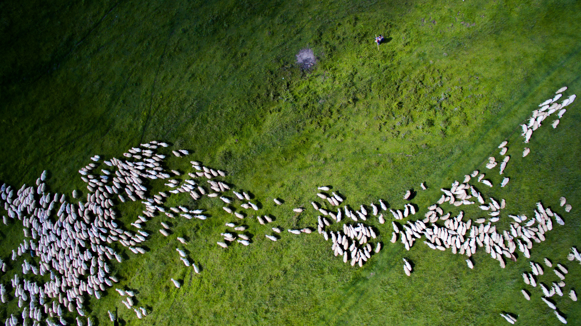PHOTOS: A Drone's View Of The World