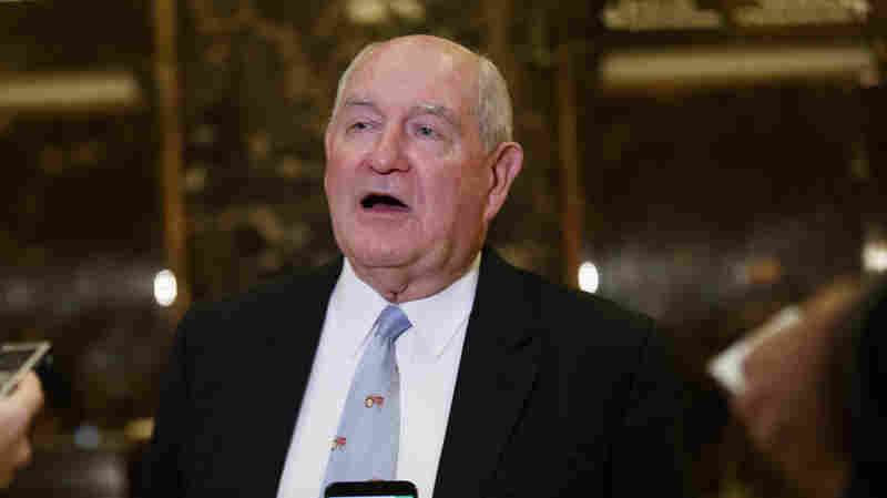Trump To Nominate Former Georgia Gov. Sonny Perdue To Head Agriculture Department