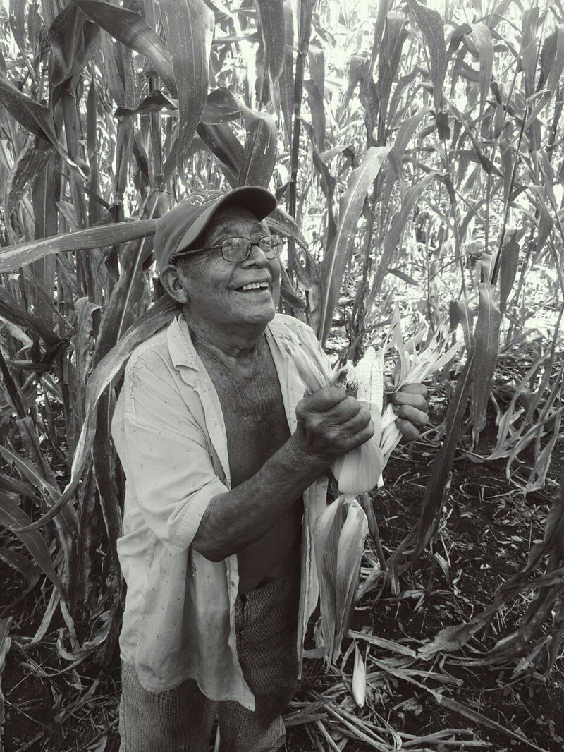 Mayans Have Farmed The Same Way For Millennia  Climate Change Means