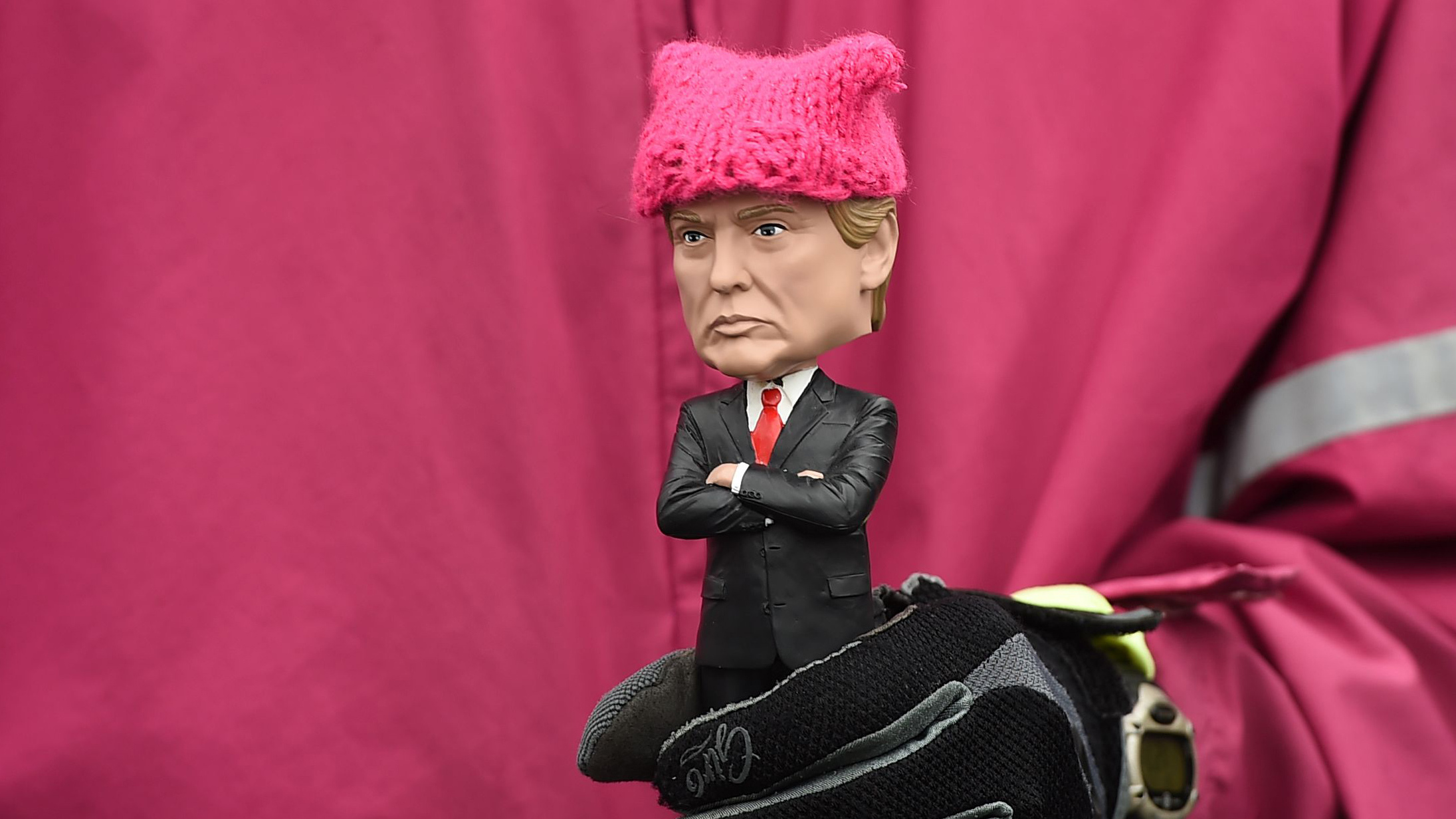 Image result for pink pussy hat