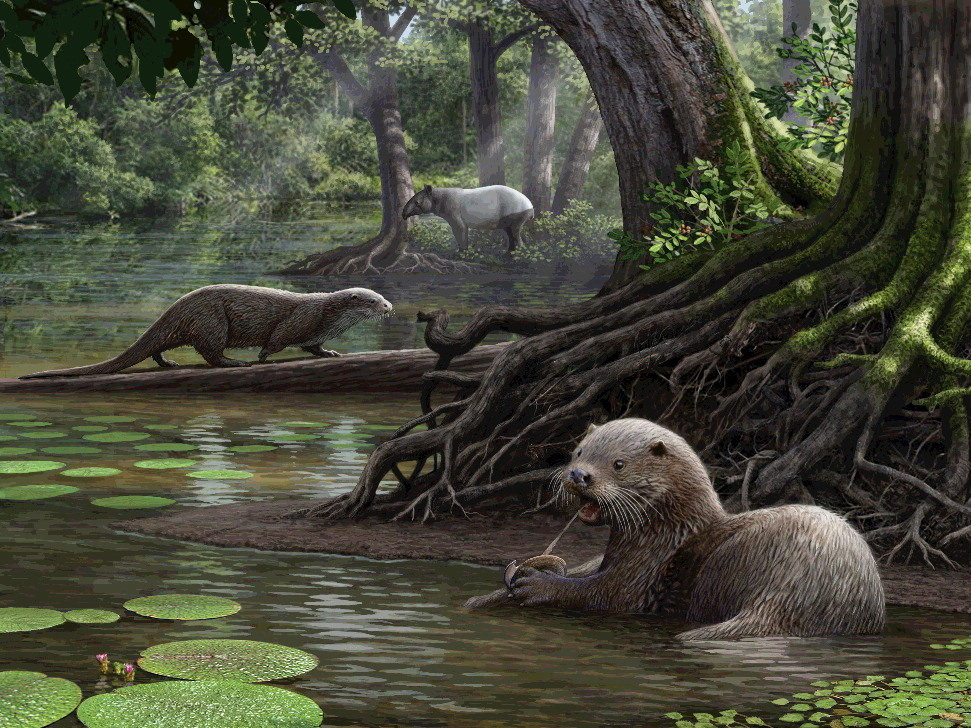 These fearsome giant otters roamed China millions of years ago