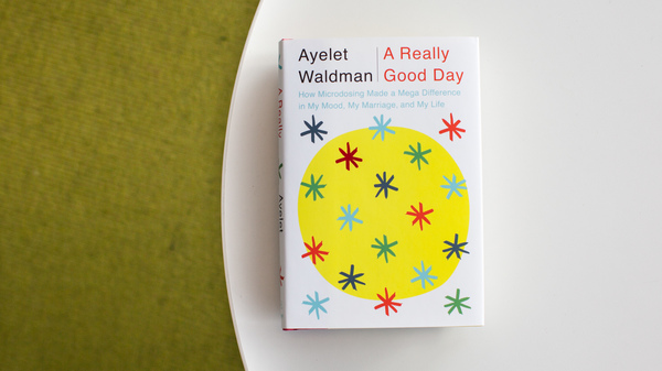 Cover art from A Really Good Day, by Ayelet Waldman