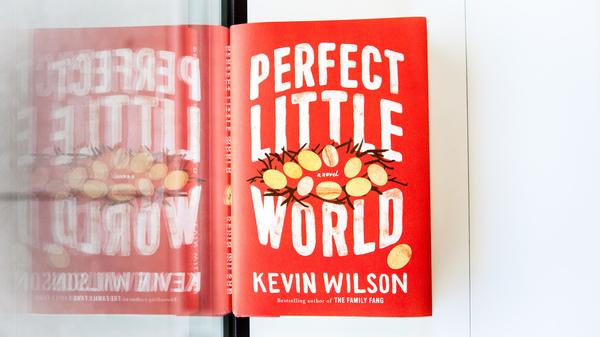 Perfect Little World