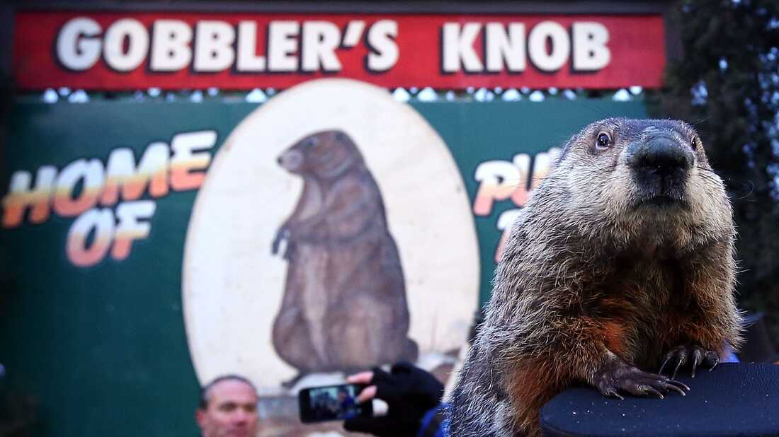 For Groundhog Day, Hear Public Radio's Records On Repeat