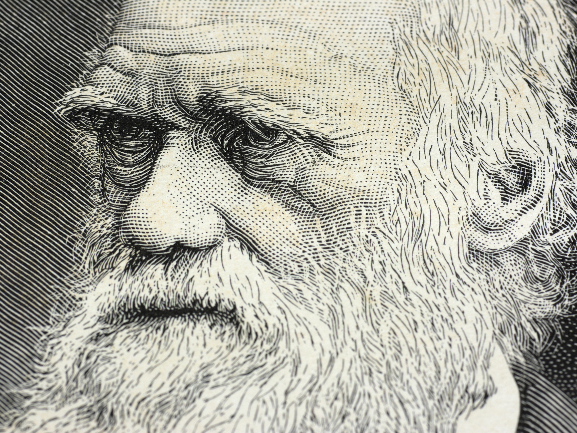 Three Things You Might Not Know About Charles Darwin : 13.7: Cosmos And  Culture : NPR