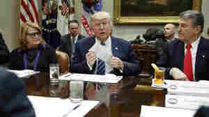 Will Senate Democrats Work With Trump? The 10 Senators To Watch