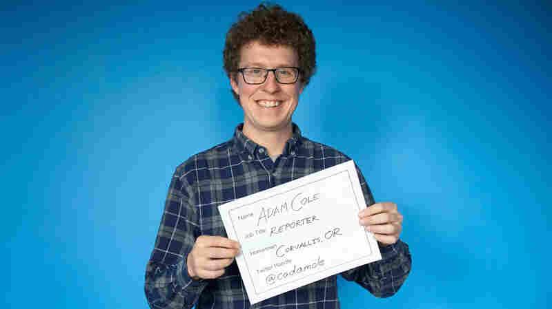 Faces Of NPR: Adam Cole