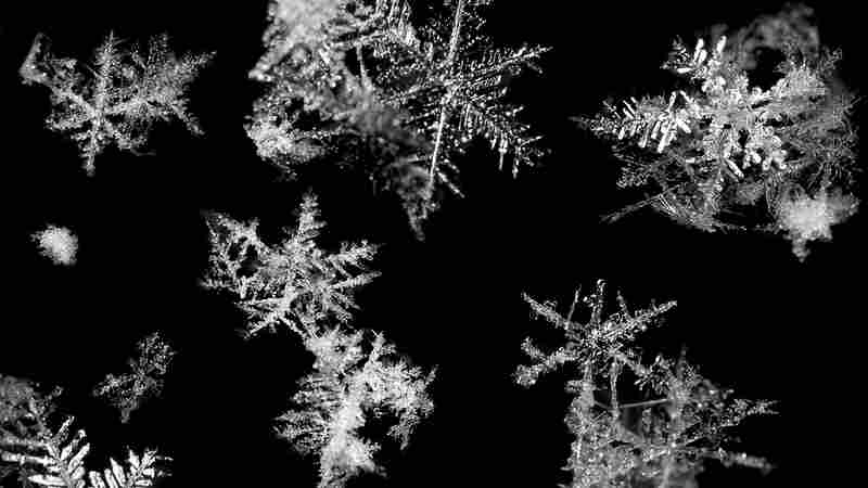 Video: Making Snowflakes In Slo-Mo