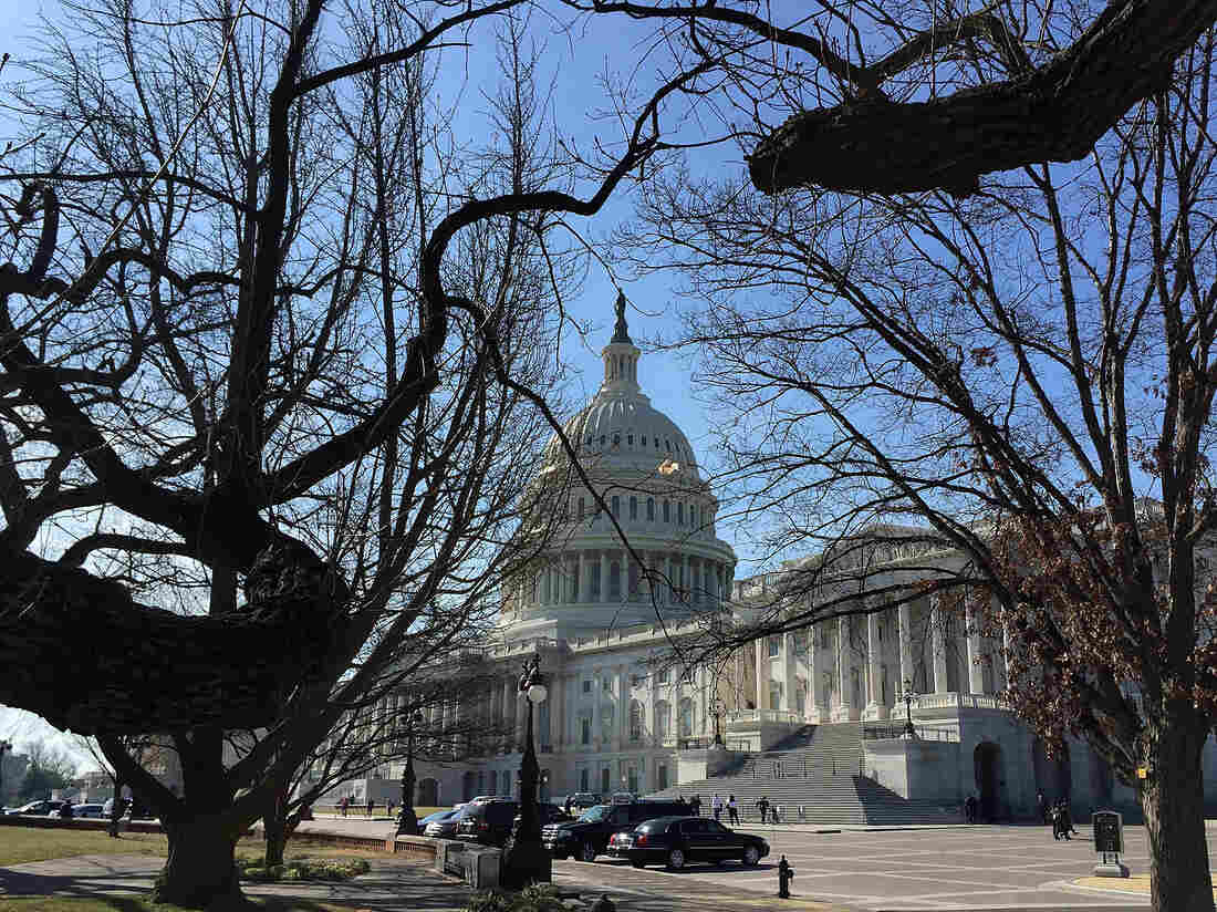 The Capitol building earlier this month.