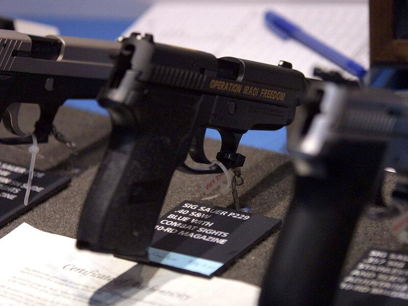 Court Strikes Down Florida Law Barring Doctors From Discussing Guns on aw gun, mm gun, gm gun, dd gun, tt gun, mr gun, sg gun, sk gun,